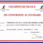 campionato_francese