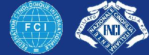 Allevamento riconosciuto ENCI ed FCI