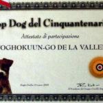 top_dog